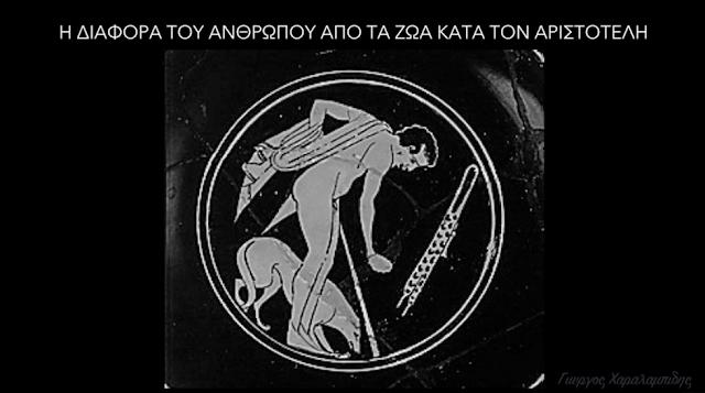 Η Διαφορά Του Ανθρώπου Από Τα Ζώα Κατά Τον Αριστοτέλη