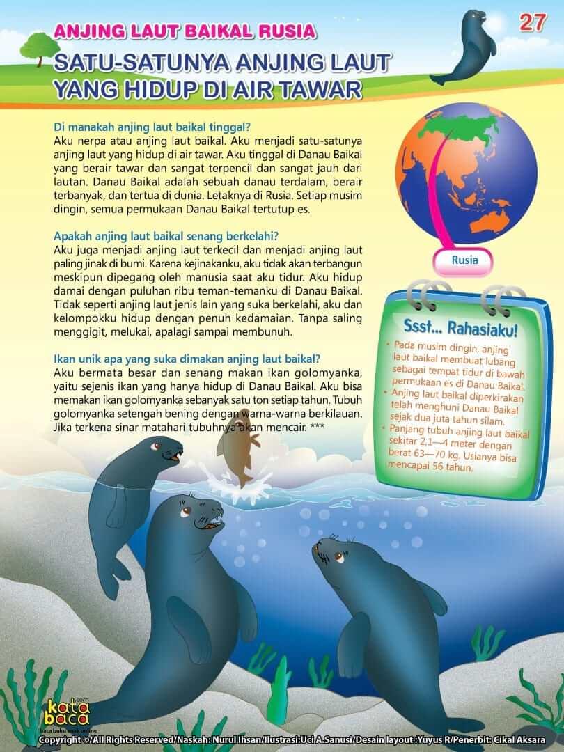 Anjing Laut Baikal Rusia adalah Satu-satunya Anjing Laut yang Hidup di Air Tawar