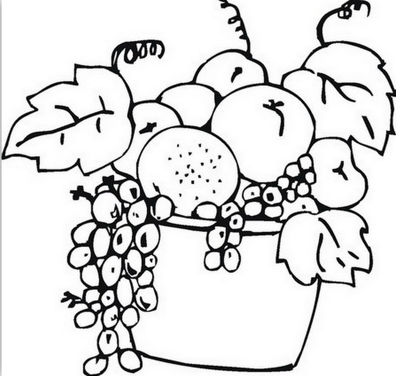 Imgenes Arte Pinturas: Flores y Frutas Para Colorear