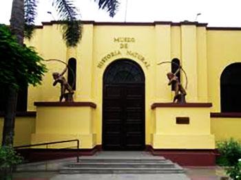 Museo de Historia Natural - UNMSM