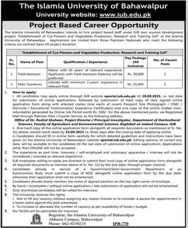 IUB Islamia University of Bahawalpur Jobs 2021 in Pakistan - Today Govt Jobs in Pakistan 2021