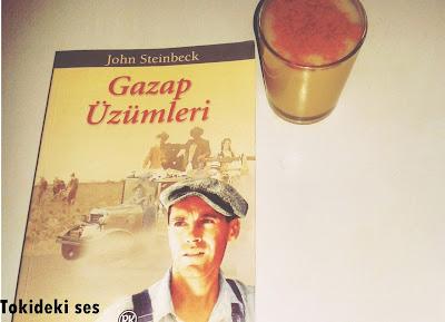 gazap üzümleri kitap yorumu, John Steinbeck kitapları,pulitzer ödüllü kitap, Nobel ödüllü yazar, Dünya klasiği kitabı, klasik kitap örneği