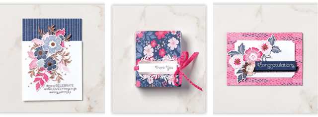 Everything is Rosy card and box sample ideas