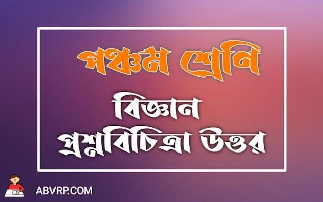 Model Question Paper 19 | গায়ে রােদ লাগালে ভালাে কেন | পঞ্চম শ্রেণীর  রায় ও মার্টিন প্রশ্ন বিচিত্রা প্রশ্ন উত্তর
