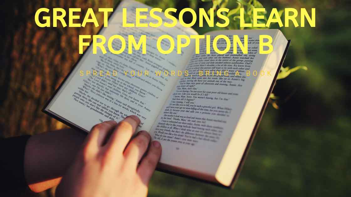 Option B Summary By