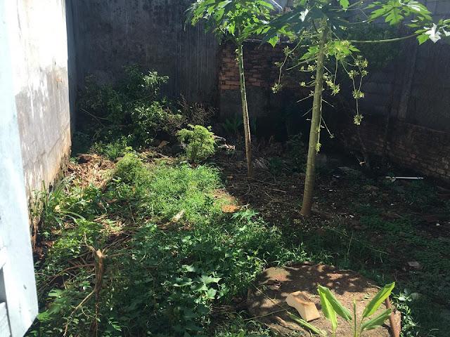 Nhà phố mặt tiền đường Trịnh Hoài Đức, Phường Xuân Trung, TX. Long Khánh, Đồng Nai 02