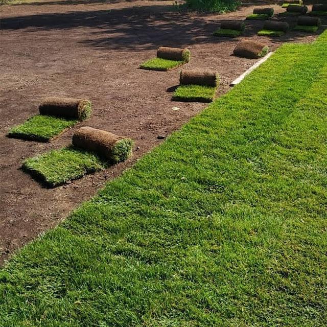 ديكورات تنسيق الحدائق