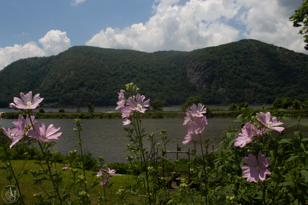 Landscape Photography Tip