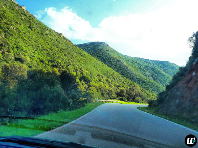 Road through the mountains | Sardinia, Italy | wayamaya