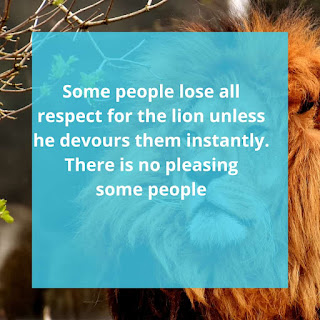 101+Best Motivational Lion king Quotes of Love With Image