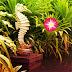 Games2Rule - Emancipate Worm in Garden