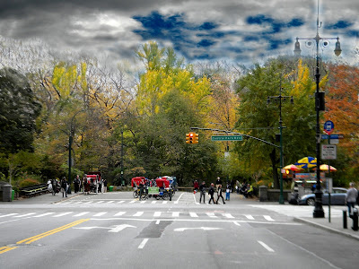 Central Park New York City Autumn and Fall Colors Strawberry Fields