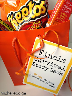 Finals Survival Study Sack-  all orange treats and printable tag.