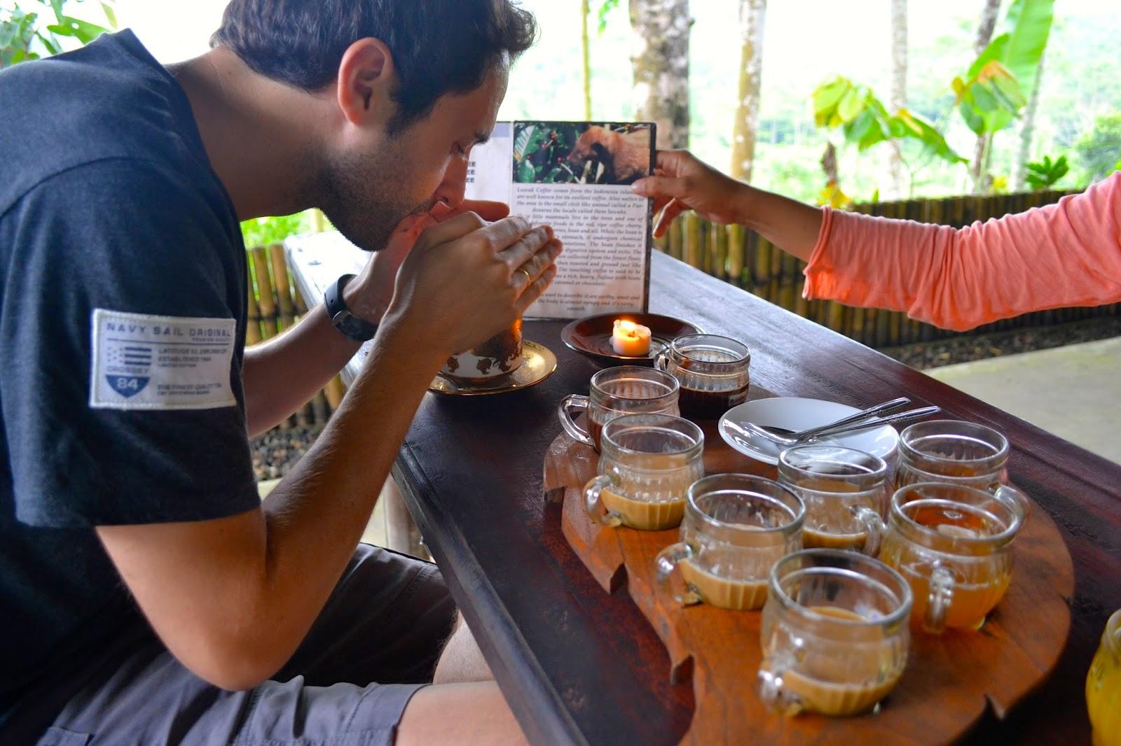 degustación de café lombak, bali, indonesia