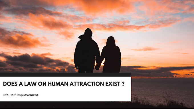 Does a Law on Human Attraction Exist?