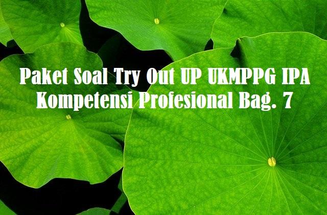 Paket Soal Try Out UP UKMPPG IPA Kompetensi Profesional Bag. 7