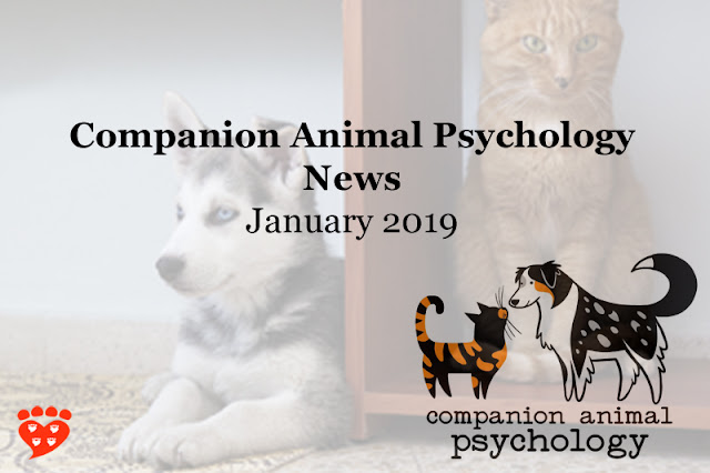 A ginger cat and a Siberian husky puppy; text reads Companion Animal Psychology News