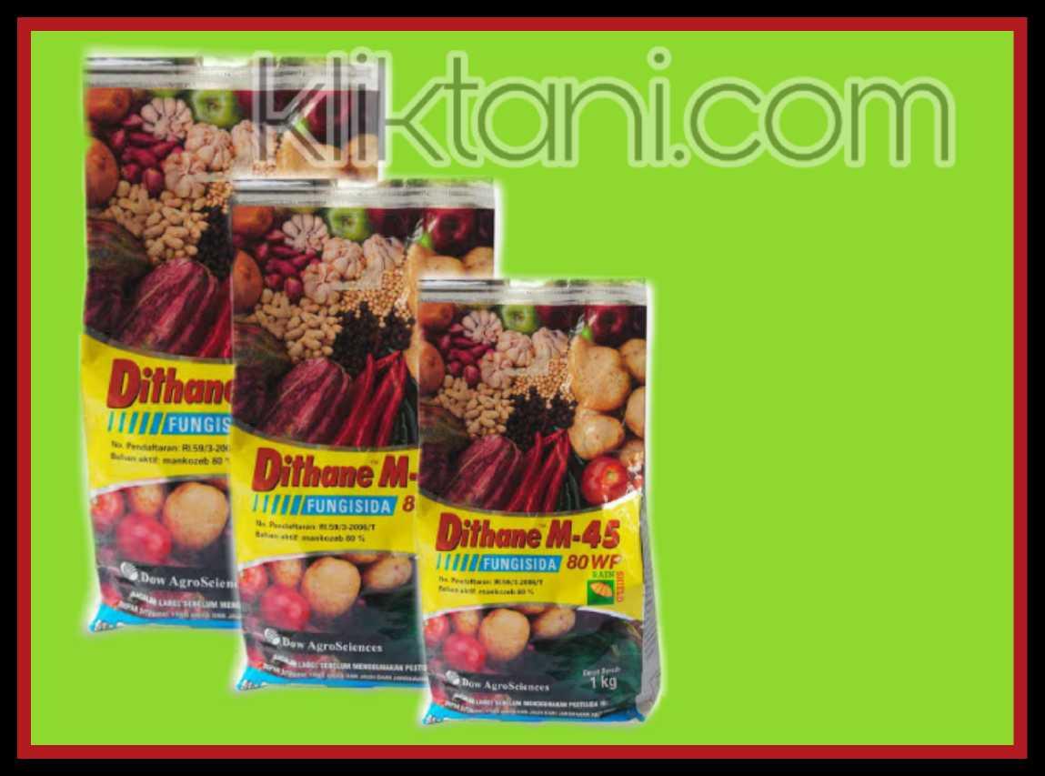 Fungisida Dithane Untuk Jagung