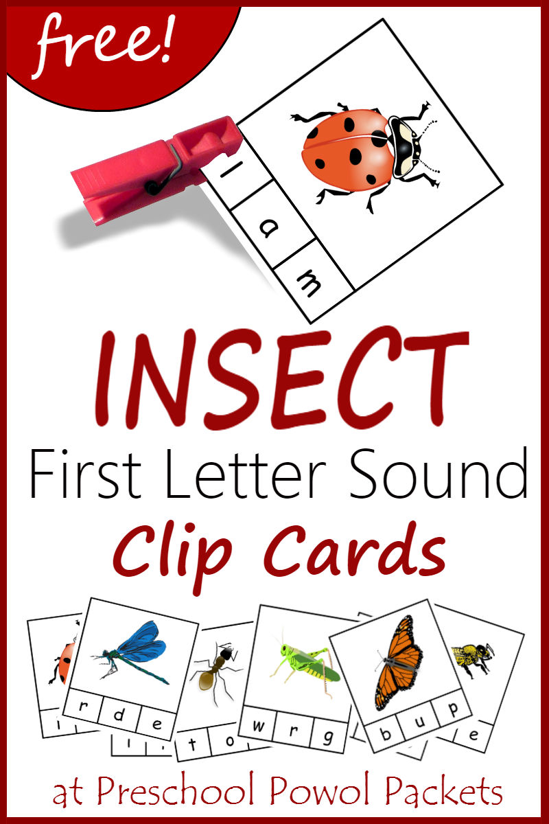 Insect Bug Spider Themed Preschool Printables