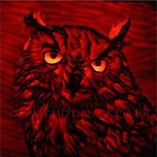 An Owl carved on a pumpkin