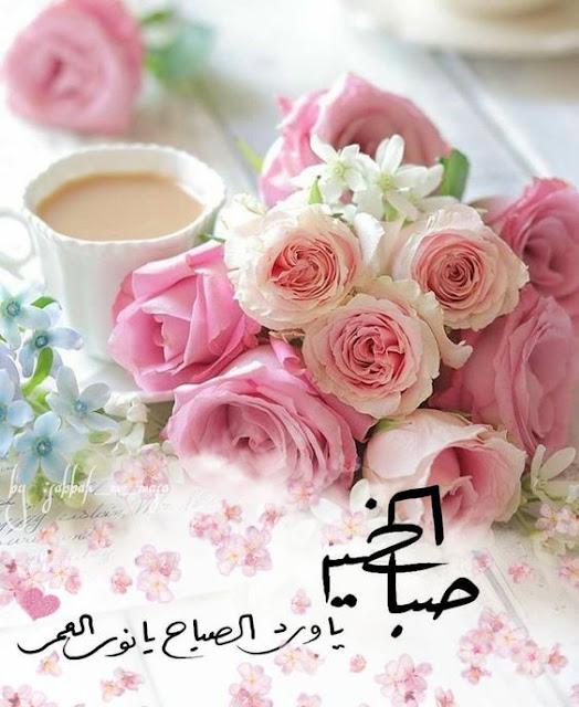 صباح الخير يا ورد الصباح يا نور العمر.