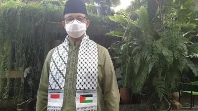 Anies Pasang Lampu Bernuansa Bendera Palestina di 10 Titik di Jakarta