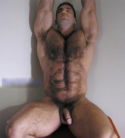 hombres velludos desnudos