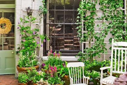12 Creative Small Space Gardening