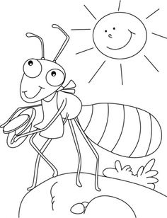 Daily Activities Ant Animal Coloring Pages For Kids