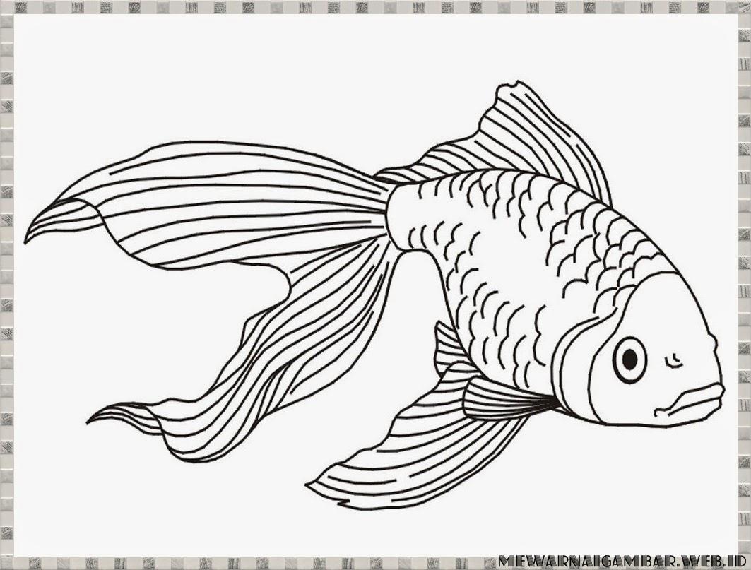Download Contoh Gambar Sketsa Ikan