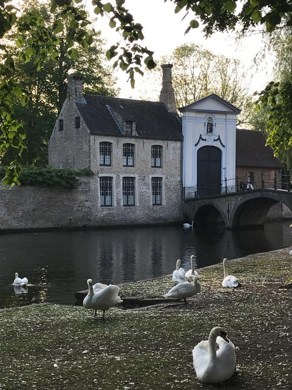 Charming image of Bruges Belgium - found on Hello Lovely Studio