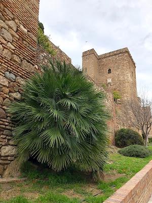 Malaga i Nerja - zwiedzanie, rady zdjęcia