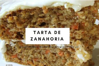 Receta Fácil de Tarta con Zanahoria