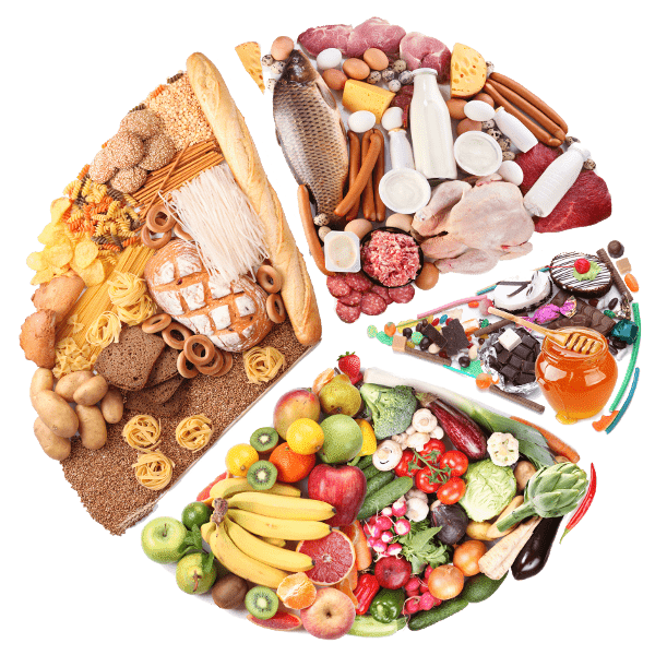 High Protein Diets for Weight Loss