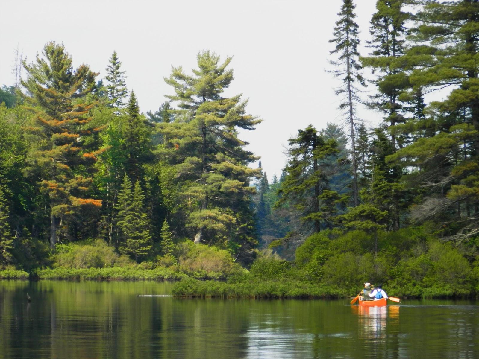 Camping In Ontario Algonquin Park Rain Lake Ranger Cabin