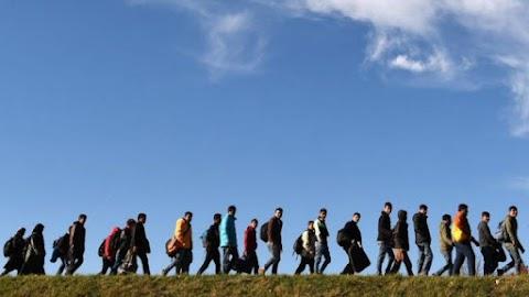Sérült migránsokat találtak a boszniai-horvát határon