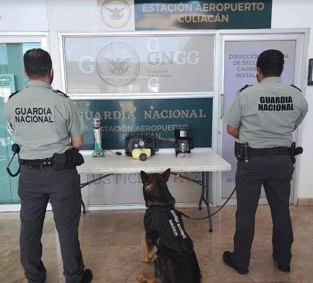EN BOCINA, CAFETERA Y BATIDORA, BINOMIOS CANINOS DE LA GUARDIA NACIONAL LOCALIZAN ENVOLTORIOS DE APARENTE METANFETAMINA