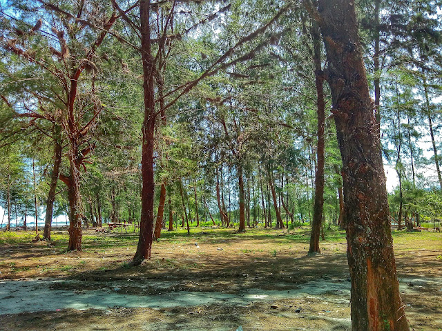Pantai Indah Kualo Barangbang Tapanuli Tengah