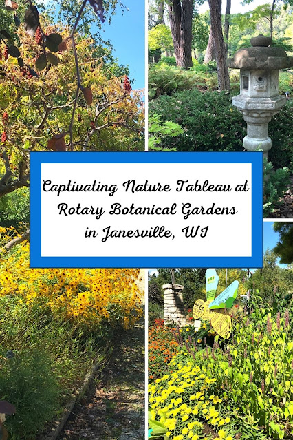 Captivating Nature Tableau at Janesville's Rotary Botanical Gardens