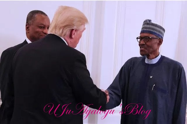 What Donald Trump told President Buhari in New York yesterday