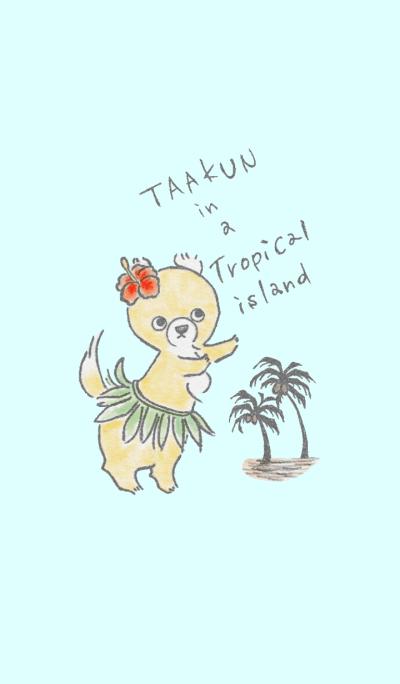 Taakun in a Tropical island