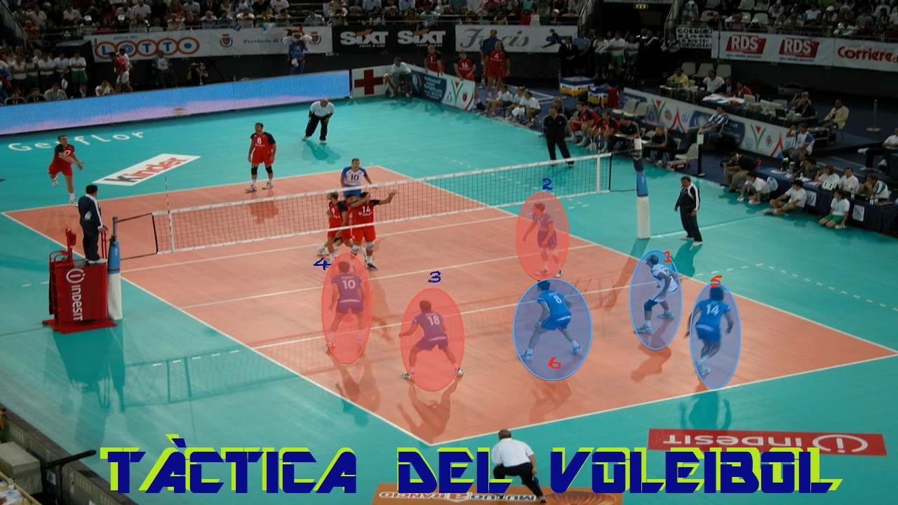 Posiciones tacticas del voleibol