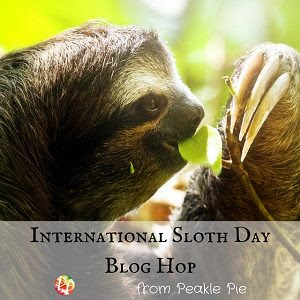International Sloth Day Blog Hop