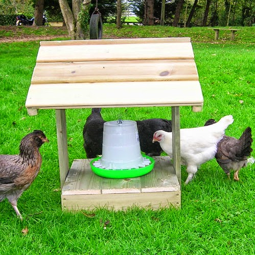 Feeder Shelter for Poultry