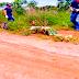 Homem é encontrado morto a tiros em fazenda no município de Babaçulândia