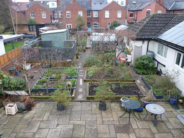 January, 2021, Winter, Garden