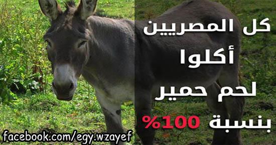 """الطب البيطري يعلن خبر سعيد """"كل المصريين اكلوا لحم حمير بنسبة 100%"""" فعلا عملوها المصريين"""