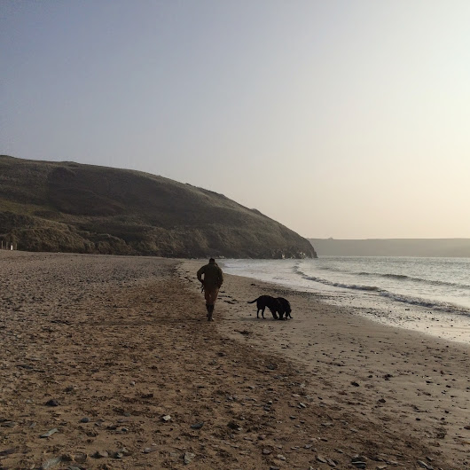 Days Out - Walk along the Camel estuary and Daymar Bay