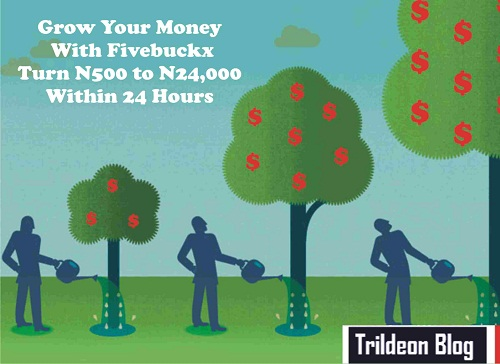 How To Earn Extra N24,000 Online Within 24hours In Nigeria With Fivebuckx