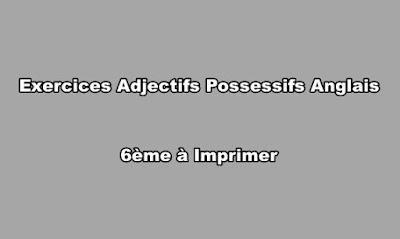 Exercices Adjectifs Possessifs Anglais 6ème à Imprimer